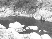 Deep Pool Feather River von Frank Wilson