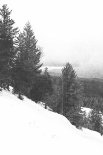Sierras In Winter von Frank Wilson