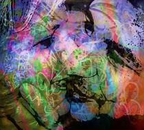 Adr-dia-23-graffiti-fine