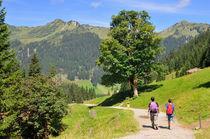 Wanderung im Kleinwalsertal, Österreich by Matthias Hauser