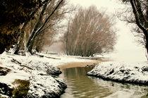 winter landscape by Szantai Istvan