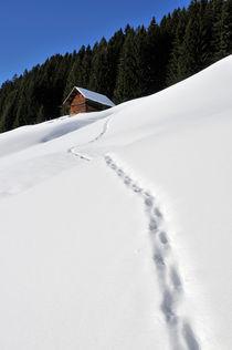 Spuren im Schnee - Kleinwalsertal by Matthias Hauser