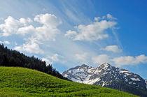 Wiese, Berge und blauer Himmel - Frühjahr in den Alpen by Matthias Hauser
