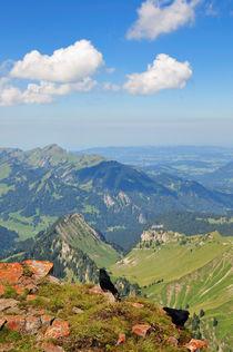 Blick vom Berg Hoher Ifen, Allgäuer Alpen, Österreich von Matthias Hauser