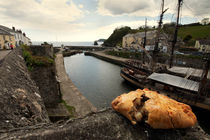 Pasty on the Harbour von Rob Hawkins