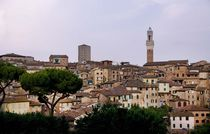 Rooftops in Siena, Italy