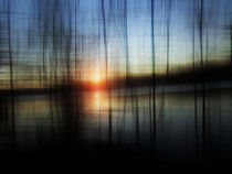 Sunset Blur by florin