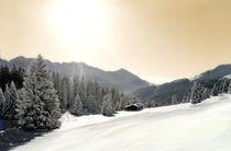 Winterlandschaft by Julia  Berger