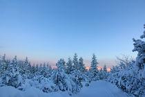 Winterlandschaft by Wolfgang Dufner