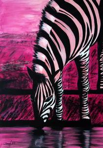 Rosa Zebra von Lidija Kämpf