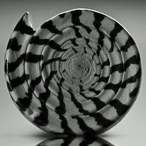 Spiral by David Pringle