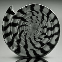 Spiral von David Pringle