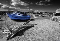 Fortuna & Driftwood  by Rob Hawkins
