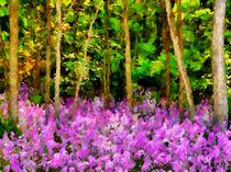 Wild Forest Violets von Zeana Romanovna