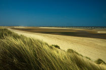 Magnificent Desolation by royspics