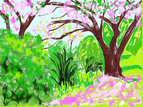 Arisebbbpink-tree-by-the-lake-3pink-tree-by-the-lake-3