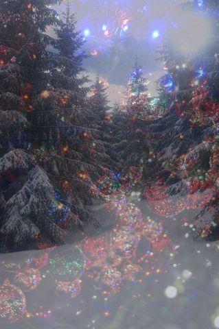Magic-new-year-version2