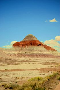 Southwest Landscape by Judy Hall-Folde