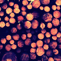 Stück von Holz von Kai Hoge