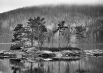 Scandinavian picture von pitquist