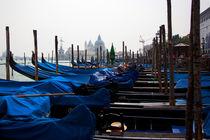 Venice Gondolas - Italy by Gillian Sweeney