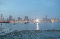 Panama city  by David Castillo Dominici