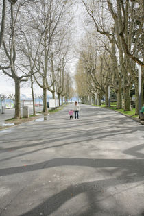 mother holds hand of little daughter walking in a beautiful road of trees by David Castillo Dominici