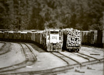 Trains Waiting by Jamie Starling