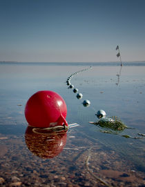 Oh buoy! by Paul Davis