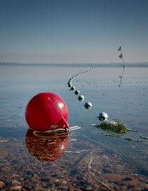 Oh buoy! von Paul Davis