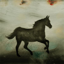 Horse by Antonio Rodrigues Jr