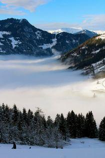 """Im Nebel verfangen"" by © Ivonne Wentzler"