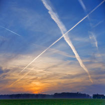 The big X by Paul Artner