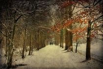 Enchanting Dutch Winterlandschape by Annie Snel - van der Klok