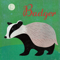 Badger by Benjamin Bay
