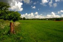 Devon Landscape  by Rob Hawkins