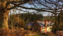 Devon Farmhouse  in the Valley  by Rob Hawkins