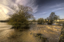 The Floods at Stoke Canon  von Rob Hawkins