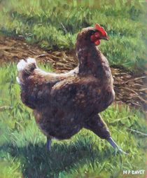 Single chicken walking around on grass von Martin  Davey