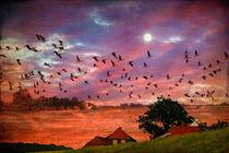 Sonnenuntergang am Deich von pahit