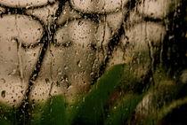 Rainy by Alvaro Chahin