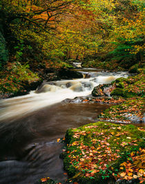 East Lyn River, Exmoor, England by Craig Joiner