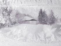 Frozen-winterworld