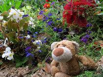 Im Blumenparadies by Olga Sander