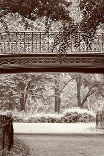Bridge in Central Park New York von Jamie Starling