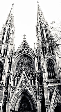 Saint Patrick's Cathedral by Jamie Starling