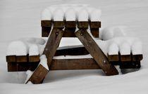 Picknickbank im Schnee  von Thomas Lambart