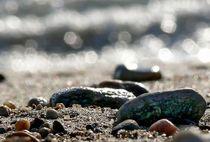 Steine am Strand No2. von Thomas Lambart