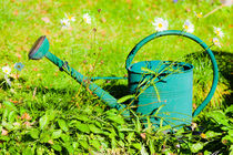 Green watering can by kbhsphoto