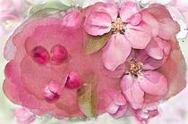 Essence of Spring von Betty LaRue